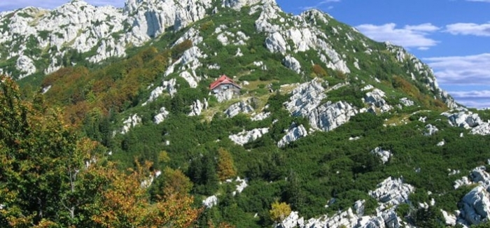 Moutain Lodge Risnjak